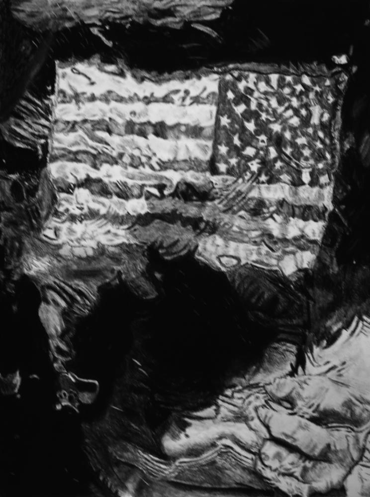 Megan Cox's Convoluted America