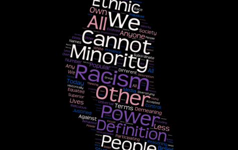 Can Minorities be Racist?