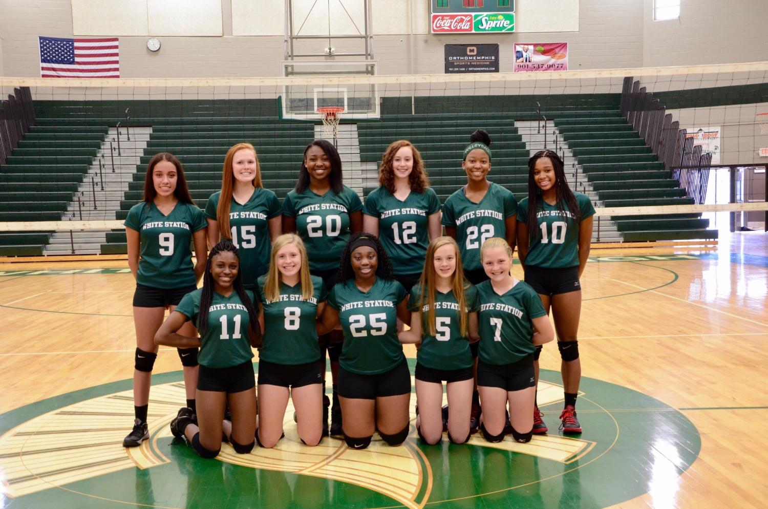 The 2017 Lady Spartans Volleyball team assemble for a team picture.