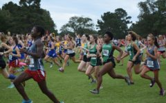 Cross country: an individual team sport