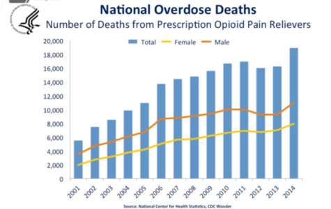 Number of deaths from prescription opioid pain relievers
