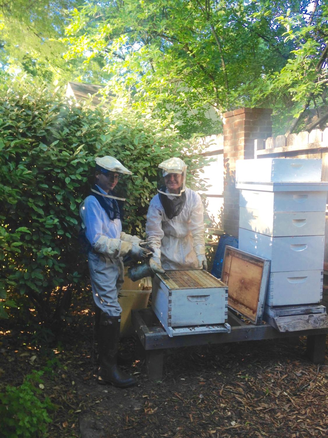 George Metcalf (10) and his mother, Corrie Metcalf, collect honey from colonies in their own backyard.