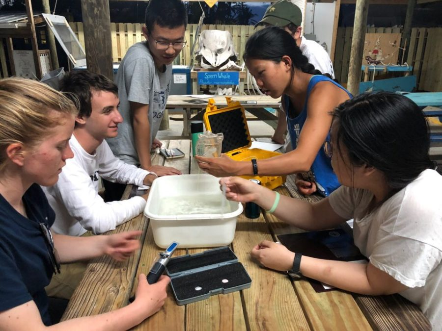 Summer pre-college program provides valuable experience