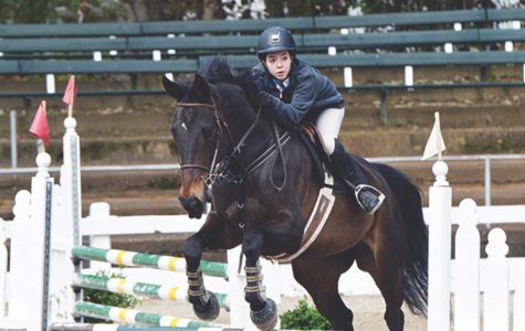 Spartan equestrians saddle up for competition