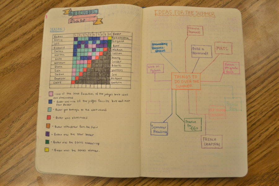 Bullet journaling: the newest organizational trend
