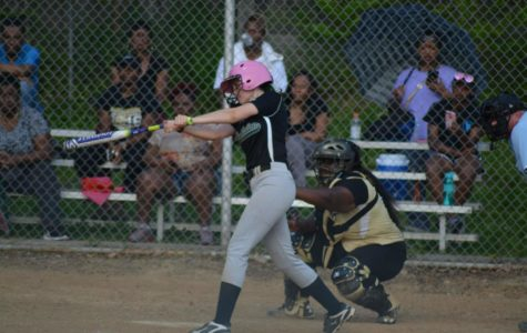 Andrea Brimhall (12) is up to bat in a game against Whitehaven High School. Brimhall is a four year member of the team, and she shows strong leadership and dedication to the sport.