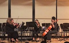 Musicians perform in chamber groups