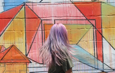 """Meredith Garrett, a friend of Lauren Mcferrin, poses in front of a bird mural off of Cooper Street. """"Whenever there was a pretty mural that me and my friends wanted to go to, that was a sense of community: let's bond over this pretty thing that we can take a picture of,"""" Mcferrin said."""