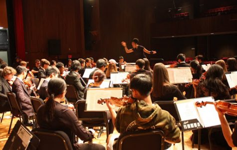 Memphis Youth Symphony sweeps the city