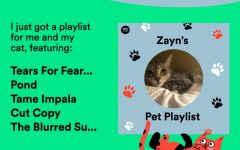 My experience with Spotify's new pet playlist feature