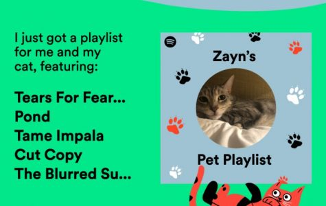An example of a playlist and accompanying graphic made by Spotify.