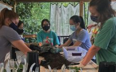 Left to right: Cameron Mosley (11), Mandy Cassius (11), Abby Cassius (11), Alice Chao (11) and Ellen Barnes (12) work together to pot plants. The WSHSEA club volunteers at the Botanical Gardens as part of the club's activities since being virtual this year.